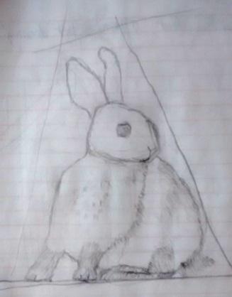 ex rabbit